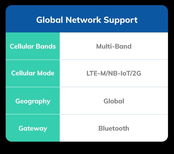 Global Cellular Network Support Asset Tracking